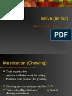 Salivary Secretions (2)