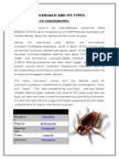 Cockroach and Its Types