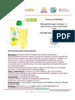 Ficha Tecnica Detergente Hogar