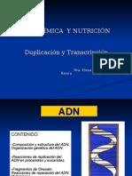 (02-OCT-14) 6B. Duplicación y Transcripción