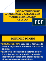 (02-OCT-14)7B. Digestión de Carbohidratos en Rumiantes y No Rumiantes