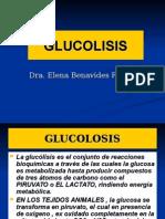 (16-OCT-14)10.- Glicólisis