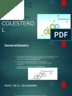 (30!10!14) Colesterol, Digestión, Biosíntesis. Regulación y Excreción