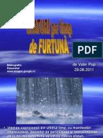 www.nicepps.ro_9149_Sfaturi pe timp de furtuna.pps