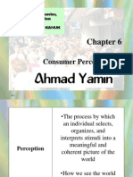 chapter 6 consumer perception