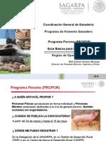 Programa Porcino