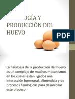 Fisiología y Producción Del Huevo