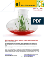 31st March.2015 Daily Global Rice E-Newsletter by Riceplus Magazine