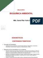 Bioquimica -Xenobioticos