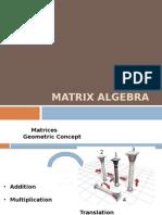 matrices1 (1).pptx