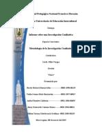 Informe Final de Investigacion Cualitativa 2015