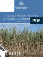 Commercial Potential of Giant Reed