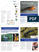 Monkton Wildlife Amphibian Crossing Project