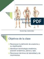 Introducción a La Anatomía Humana