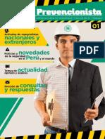 Revista El Prevencionista 1era Ed 2015