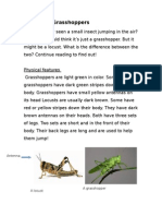 3rd Grade Locust vs. Grasshopper Rewrite
