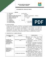 PROGRAMACIÓN ANUAL DE 2° COMU.docx