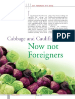 Cabbage and Cauliflower Now not Foreigners