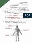 2837.pdf