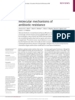 Nature Molecular Mechanisms of Antibiotic Resistance