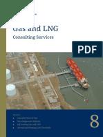 Gas & LNG