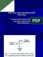 Protein Dan Metabolisme Protein