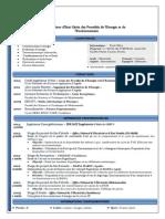 CV Ferdaousse BOUNAIL - FrançAis