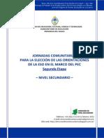 2° DOCUMENTO - ELECCIÓN DE ORIENTACIONES - DNS 2015