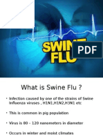 Presentation1- SWINE FLU.pptx