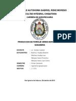 Monografia de Forraje Verde Hidroponico