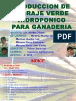 Monografia Del Forraje Verde Hidroponico