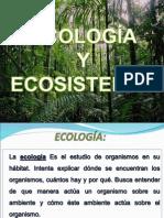 AGROECOLOGIA EXPOCICION