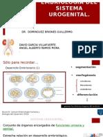Embrio Uro