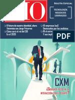 Cio Peru Revista-2