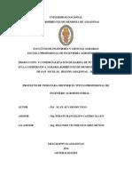 Proyecto de Tesis - Arina de Platano
