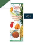 Manual Practicas Para El Procesamiento de Frutas (1)