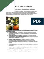 Alimentos para la mala circulación.doc