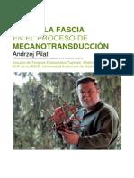 Revista ICOFA 2012-3_reconstr