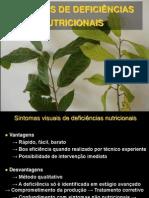 Sintomas de Deficiências de plantas