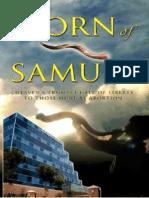 Chapter 3 - The Horn of Samuel