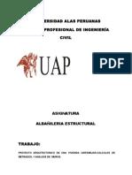 ALBAÑI.docx