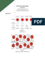 blood type testing lab report