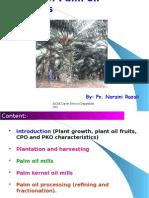 4.0 palm oil