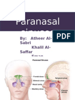 Paranasal-sinuses-2008-.pptx