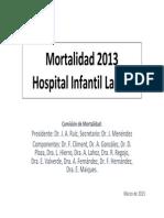 Registro mortalidad 2013