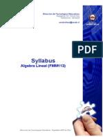 Syllabus-2010-2-FMM113