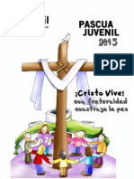 Pascua Juvenil Final 2015