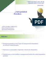 C1_Economia Intreprinderii Petroliere