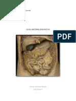 Guia 4 - Sistema Digestivo