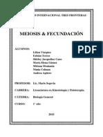 Meiosis & Fecundacion.